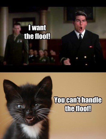 floof Tom Cruise truth Cats - 8363267328