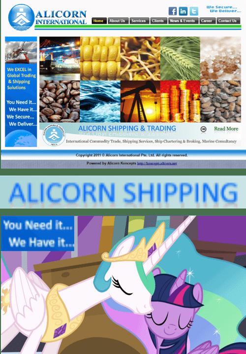 alicorn MLP ship - 8363579392
