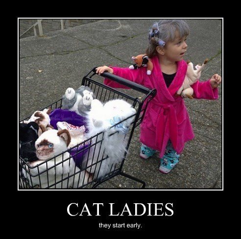 crazy funny kids cat lady