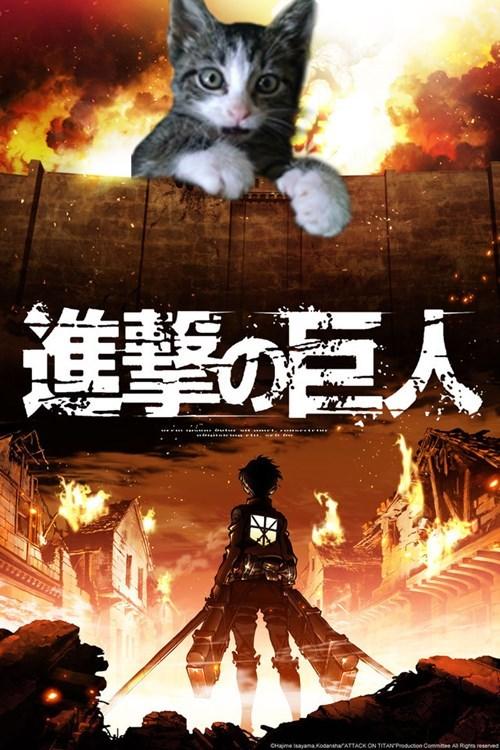 anime attack on titan - 8364819712