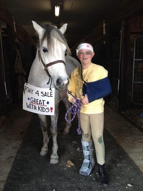 halloween costumes ponies halloween horses - 8365274368