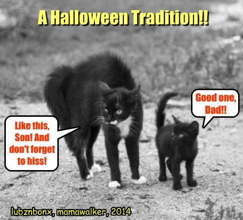 Happy Halloween To All My Peeps!!