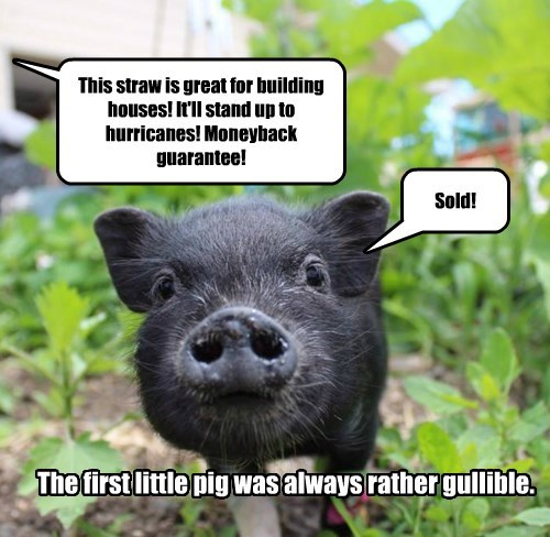 whoops,fairytale,pig,gullible