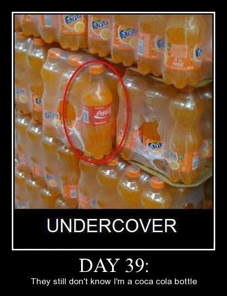 coke bottle,sneaky,undercover,funny