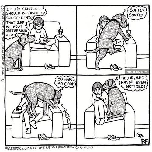 stealth dogs whoops couches web comics - 8368286976