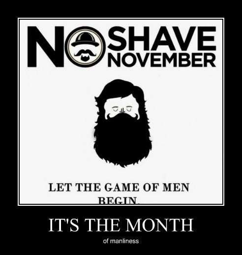 beards funny november manly - 8368346368