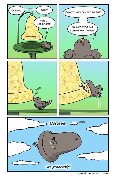 birds belief web comics - 8368490240