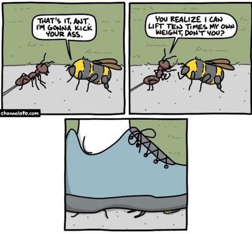 bugs fights web comics - 8368495360
