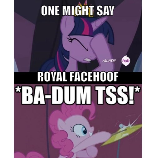 facehoof,puns,twilight sparkle