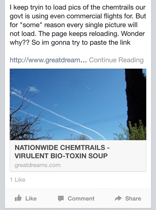 conspiracy facepalm chem trails - 8368643328
