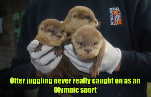 FAIL,nope,juggling,otter