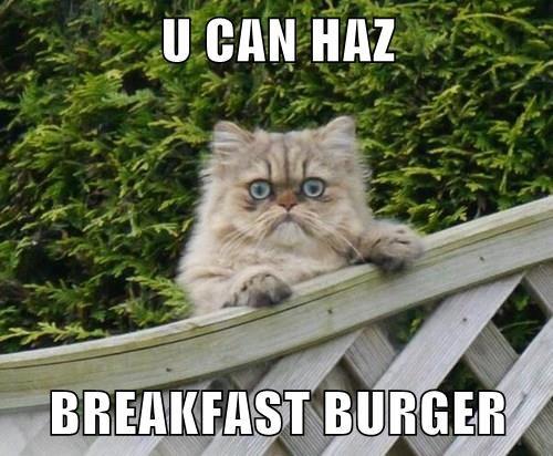 Cheezburger Image 8368788480