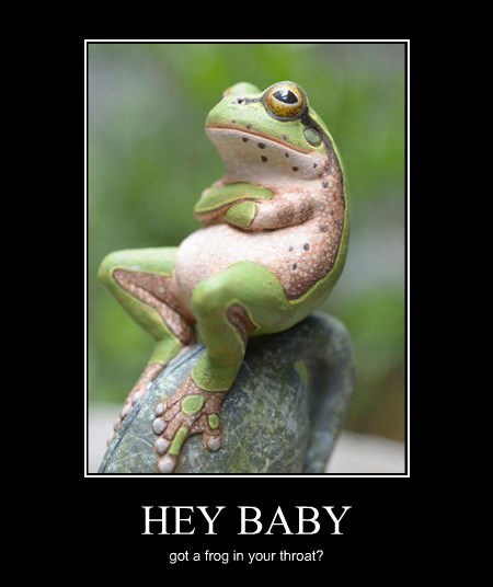pickup lines funny frog - 8369148416