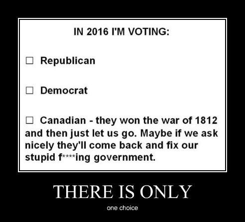 Canada usa voting funny - 8369161984