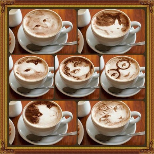 art coffee Cats latte - 8369291008