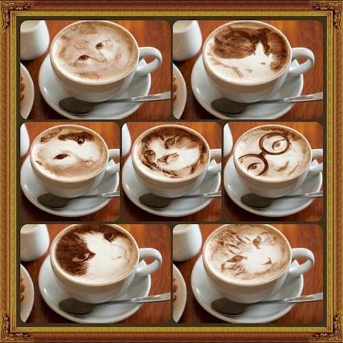 art coffee Cats - 8369291008