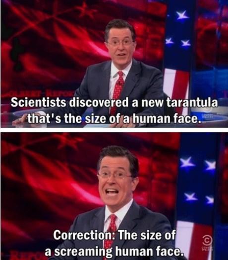 scary science tarantula funny - 8369306624