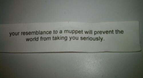 fortune cookie,wisdom,muppets,g rated,fail nation