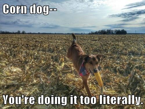 animals puns literal corn dog - 8369597440