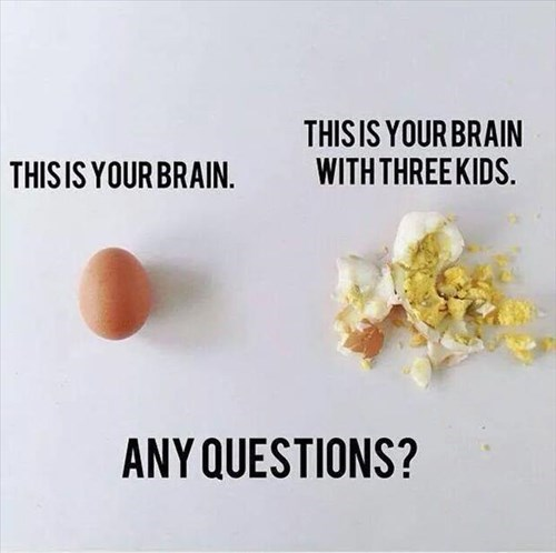 kids,eggs,parenting,brain,g rated