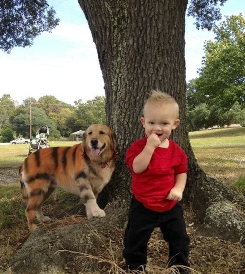 costume dogs calvin and hobbes kids parenting - 8370193408