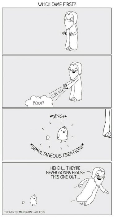 god,chicken,eggs,sad but true,web comics