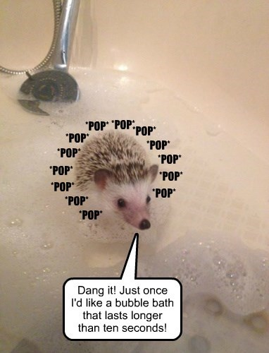 *POP* *POP* *POP* *POP* *POP* *POP* *POP* *POP* *POP* *POP* *POP* *POP* Dang it! Just once I'd like a bubble bath that lasts longer than ten seconds! *POP*