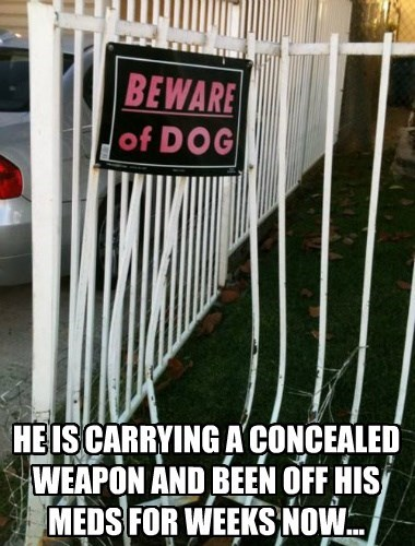 dogs beware Cats dangerous - 8370344960