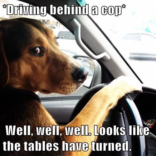 *Driving behind a cop* Well, well, well. Looks like the tables have turned.