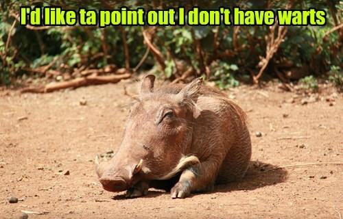 psa you dont say warthog - 8370381312