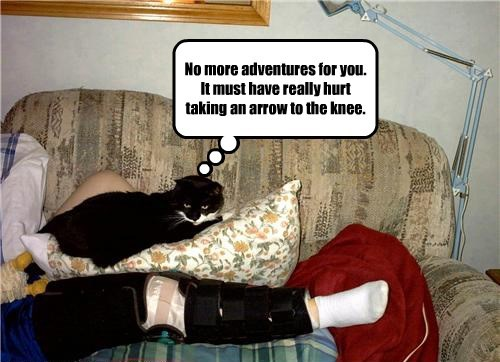 adventure arrow to the knee Cats - 8370971904