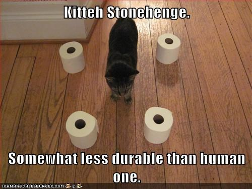 Kitteh Stonehenge. Somewhat less durable than human one.
