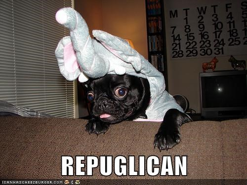 animals dogs pug elephant republican politics - 8371667712