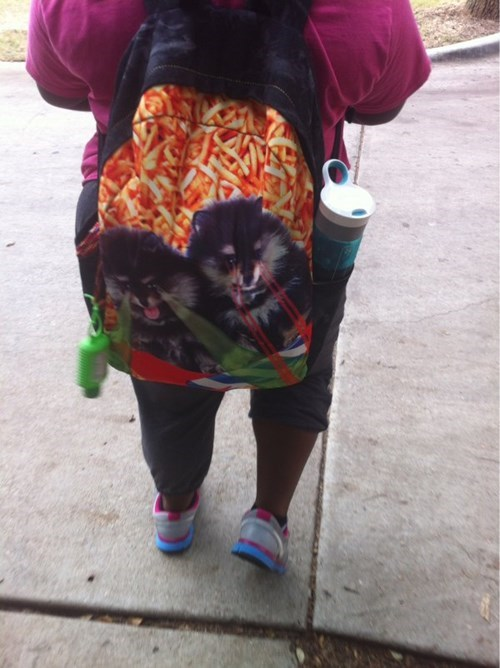 pomeranian,dogs,poorly dressed,fries,backpack