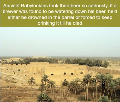 beer history awesome babylon funny