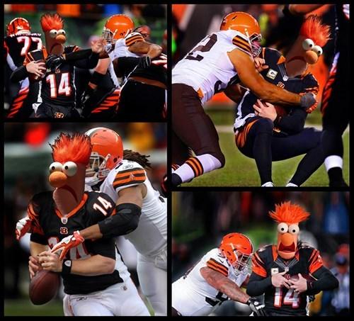 beaker andy dalton muppets Cincinnati Bengals nfl football - 8372090112