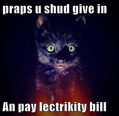 animals basement cat black cats sorry Cats - 8372144640