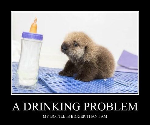 bottle,baby animals,otter,drinking problem