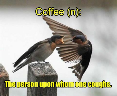 Coffee (n): The person upon whom one coughs.