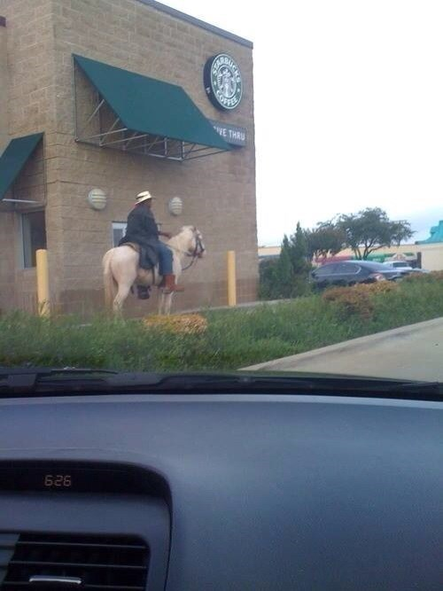 Starbucks,drive thru,coffee,texas,horses
