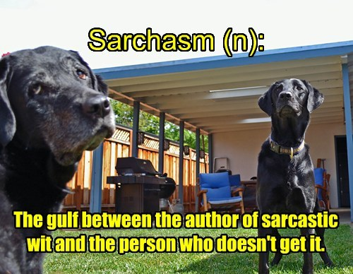 Sarchasm (n): The gulf between the author of sarcastic wit and the person who doesn't get it.