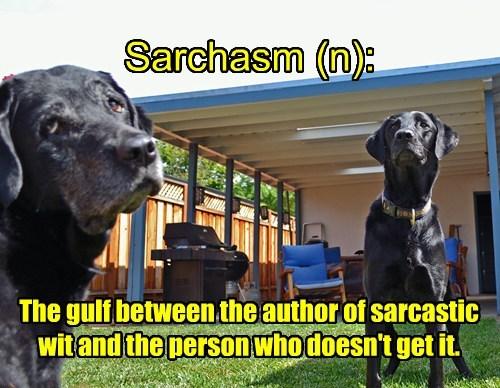 definition Black Lab sarcasm - 8373559552