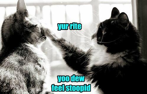 boop doctor diagnosis Cats - 8373759232