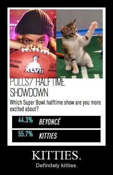 super bowl beyoncé kitties funny - 8374188800