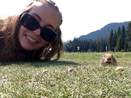 photobomb,squirrel,Perfect Timing,Photo,animals