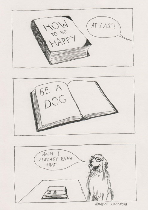 dogs life comics advice