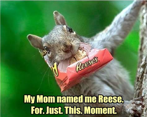 My Mom named me Reese. For. Just. This. Moment.