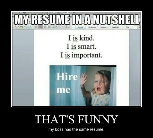 boss resume idiots funny - 8374554112