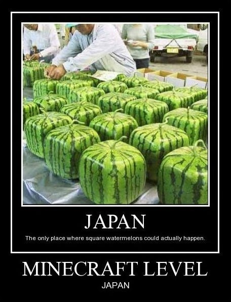 minecraft Japan watermelon funny