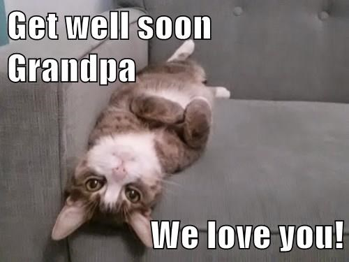 Get well soon Grandpa We love you! - Lolcats - lol | cat